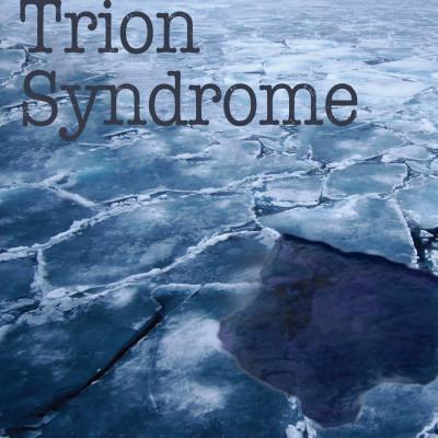 9781627200714-TrionCOV.indd