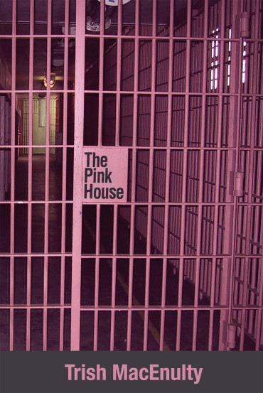 9781627201032-ThePinkHouse-COV